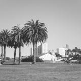 California067